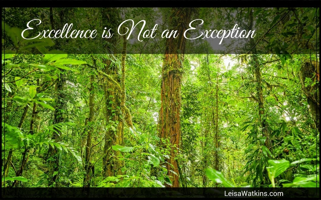 Excellence is Not an Exception
